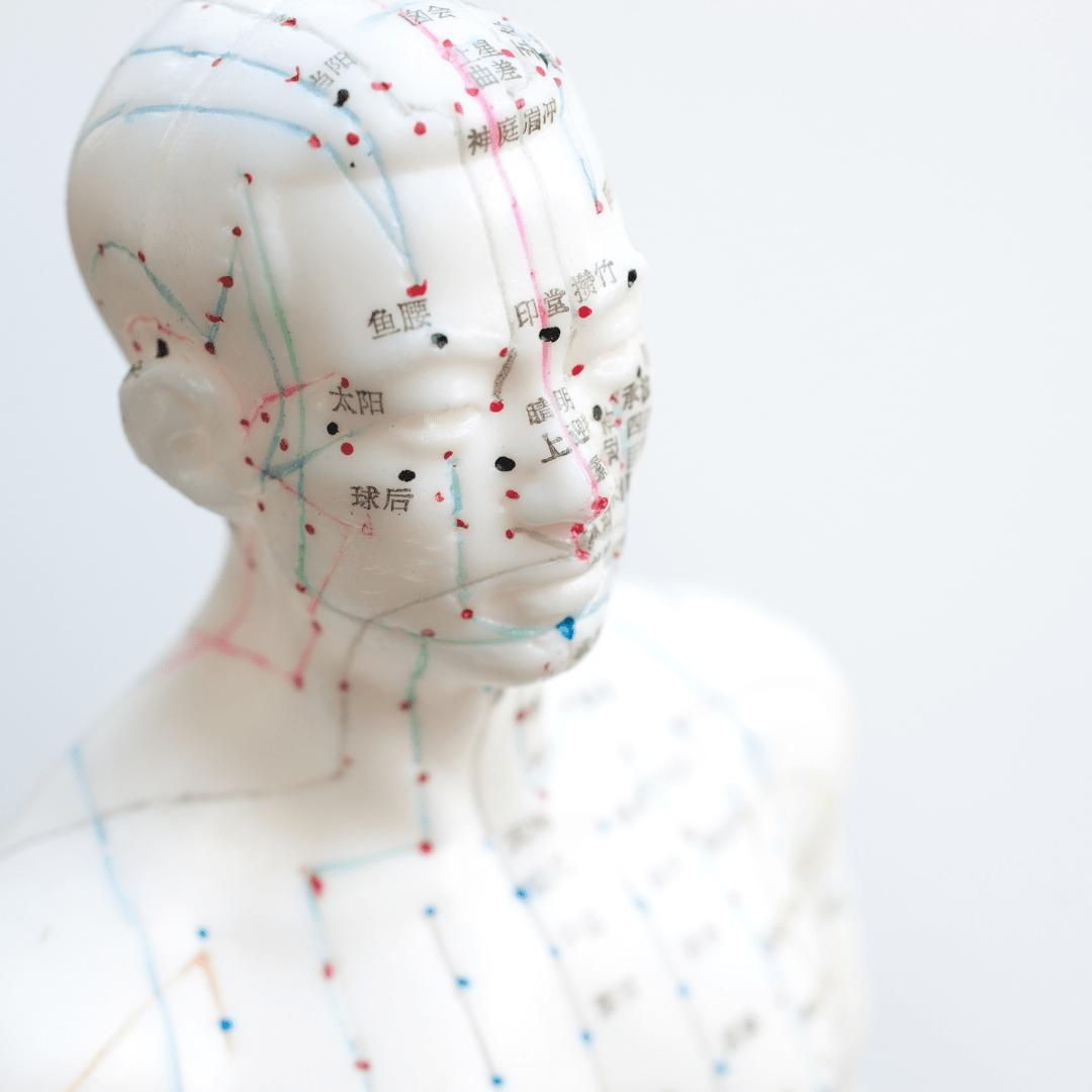 acupuntura zaragoza